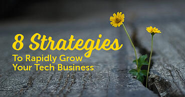 8 strategies to rapidly grow your tech business