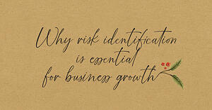 Why risk identification is essential for business growth