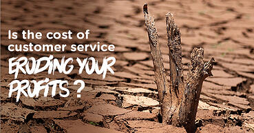 Is the cost of customer service eroding your profits?