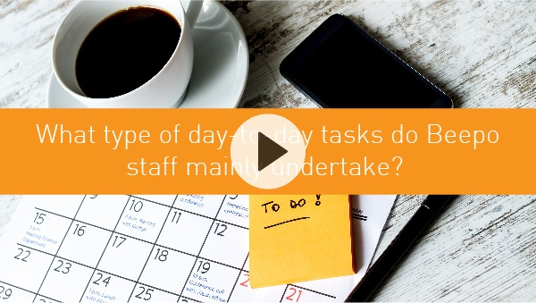 What type of day-to-day tasks do Beepo staff mainly undertake?