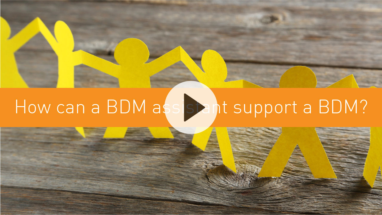 How can a BDM assistant support a BDM?
