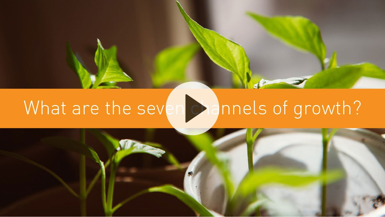 What are the seven channels of growth?